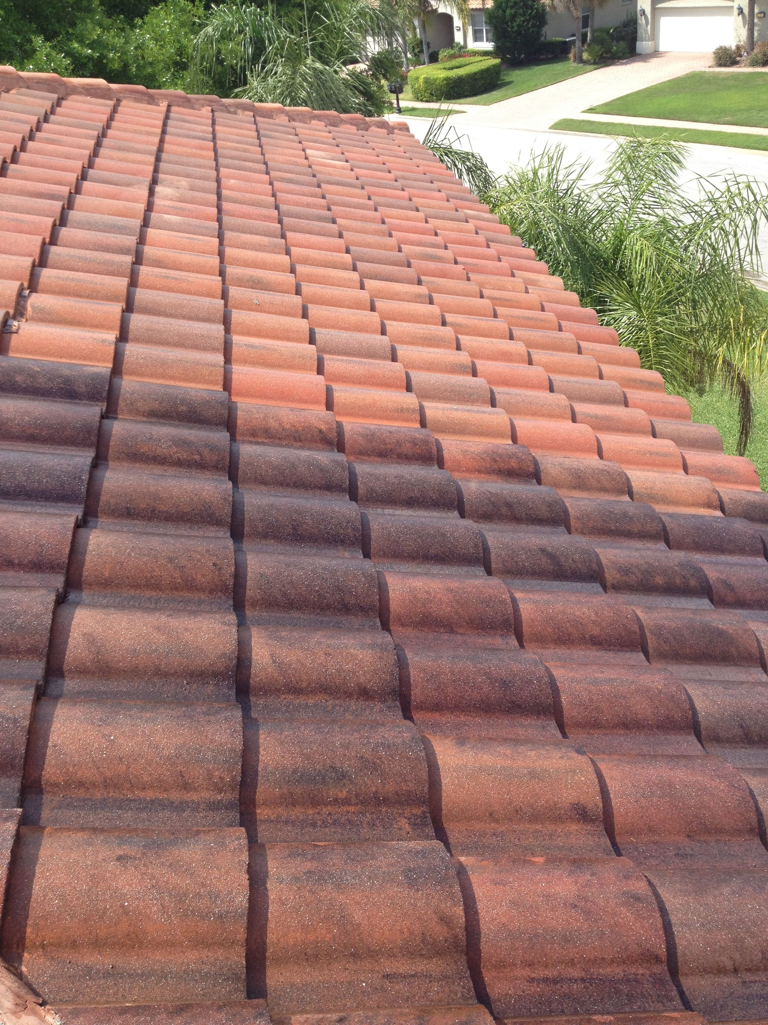 Tile Roof Cleaning Bcoxroofing Com