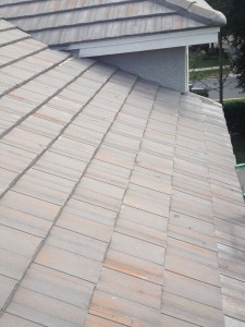 THIS TILE ROOF AREA HAS A BAD LEAK